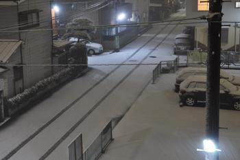 2010-02-01-雪.jpg